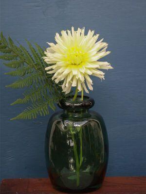 vase shape grøn