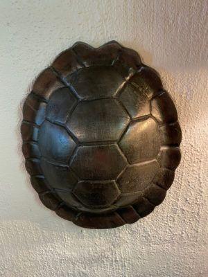 skildpaddeskjold
