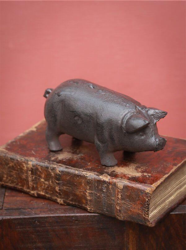 gris i støbejern